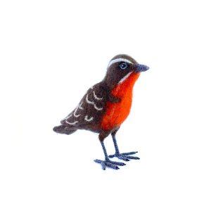Aves nativas en fieltro